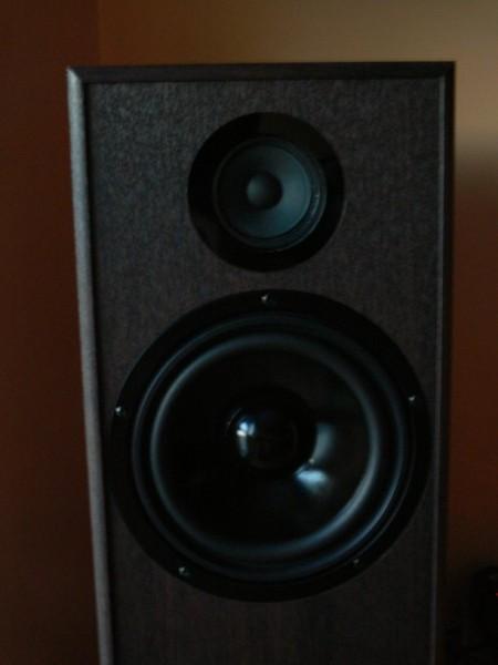 Pylon Audio Topaz (2)