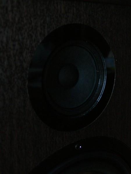 Pylon Audio Topaz (4)
