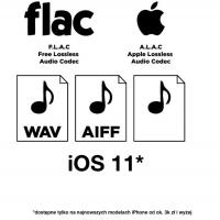 Logo FLACnaIOS